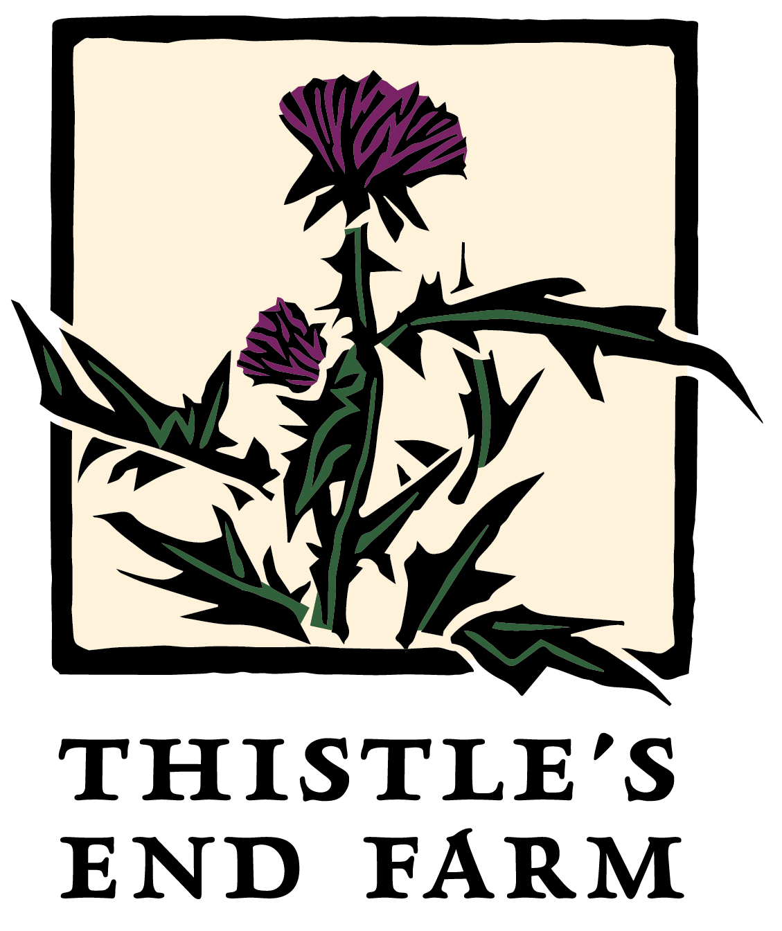 cropped-thistle_s-end-farm-branding-system_four-color-detail-cropped.png