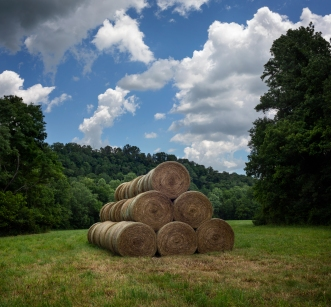 Round Bales in Bottom Field B